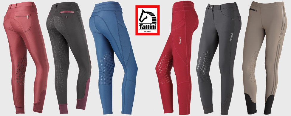 New Tattini riding breeches collection