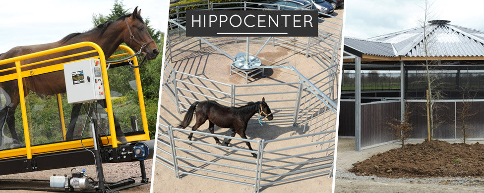 Hippocenter