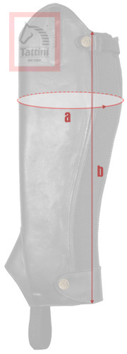Half-chaps measurements