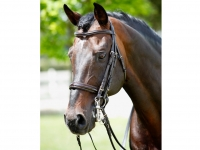 Tattini Bridle Curb/snaffle Patent Eco Double Reins