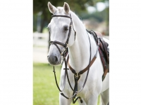 Tattini Breastplate With Martingale Y Eco