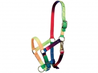Multicolour Halter For Small Horses