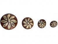 Concho Flower