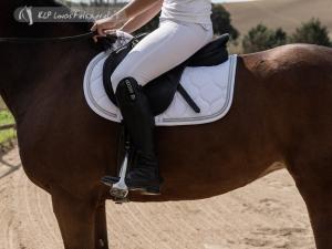 Tattini Peonia Ladies Breeches With Silicone Knee Patch