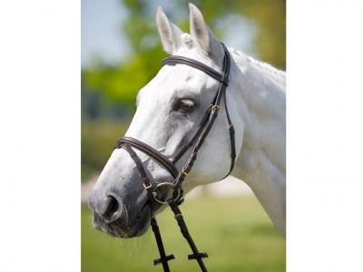 Tattini Headstall Contrast Stiching Eco Rubber Reins
