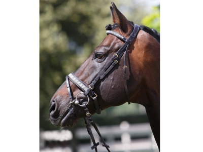 Tattini Headstall Glitter Stripe Eco Rubber Reins