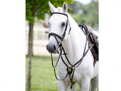 Tattini Breastplate With Martingale Adjustable Eco