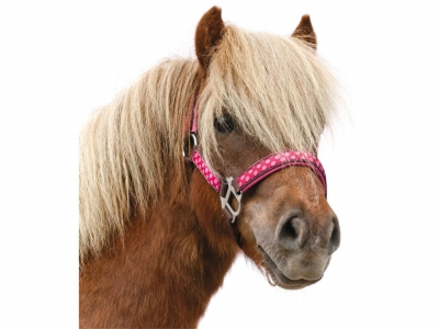 Horse-Friends Halter Dotty