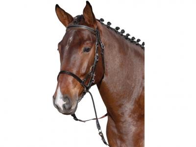 Horse-Friends Bitless Bridle Plus
