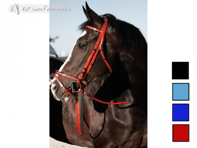Daslo Bridle Pvc With Rubber Reins