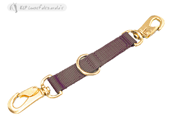 Lunging Strap
