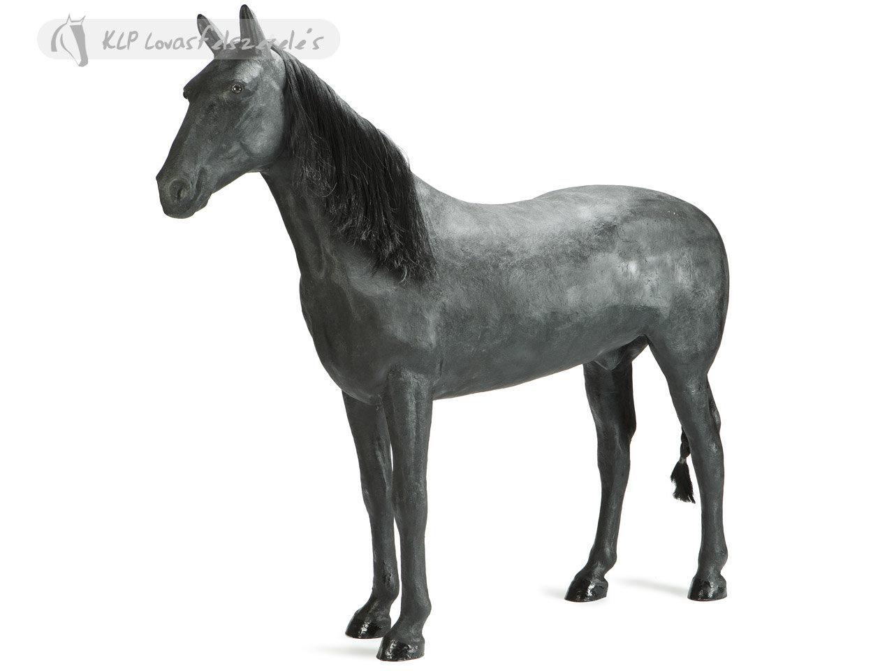 Ló Arab Üvegszálas