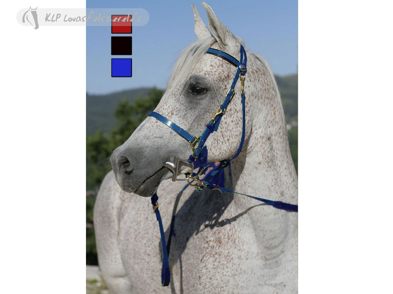 Daslo Bridle-Halter Pvc With Rubber Reins